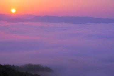 (佐用町)大撫山の雲海  ~朝日が彩る幻想的な雲海~